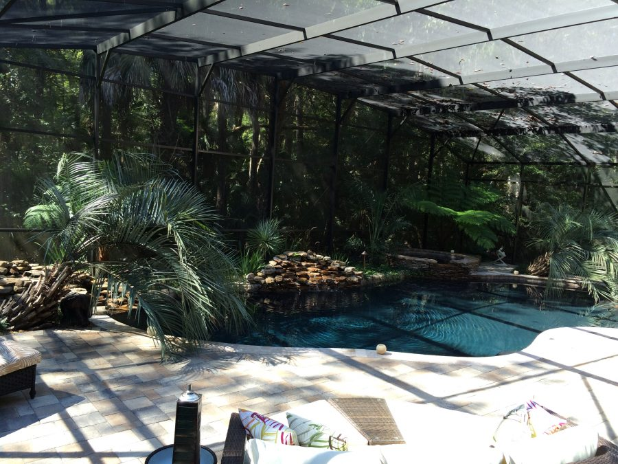Ave_Environmental_Landscape_Design_Pool_Area_01